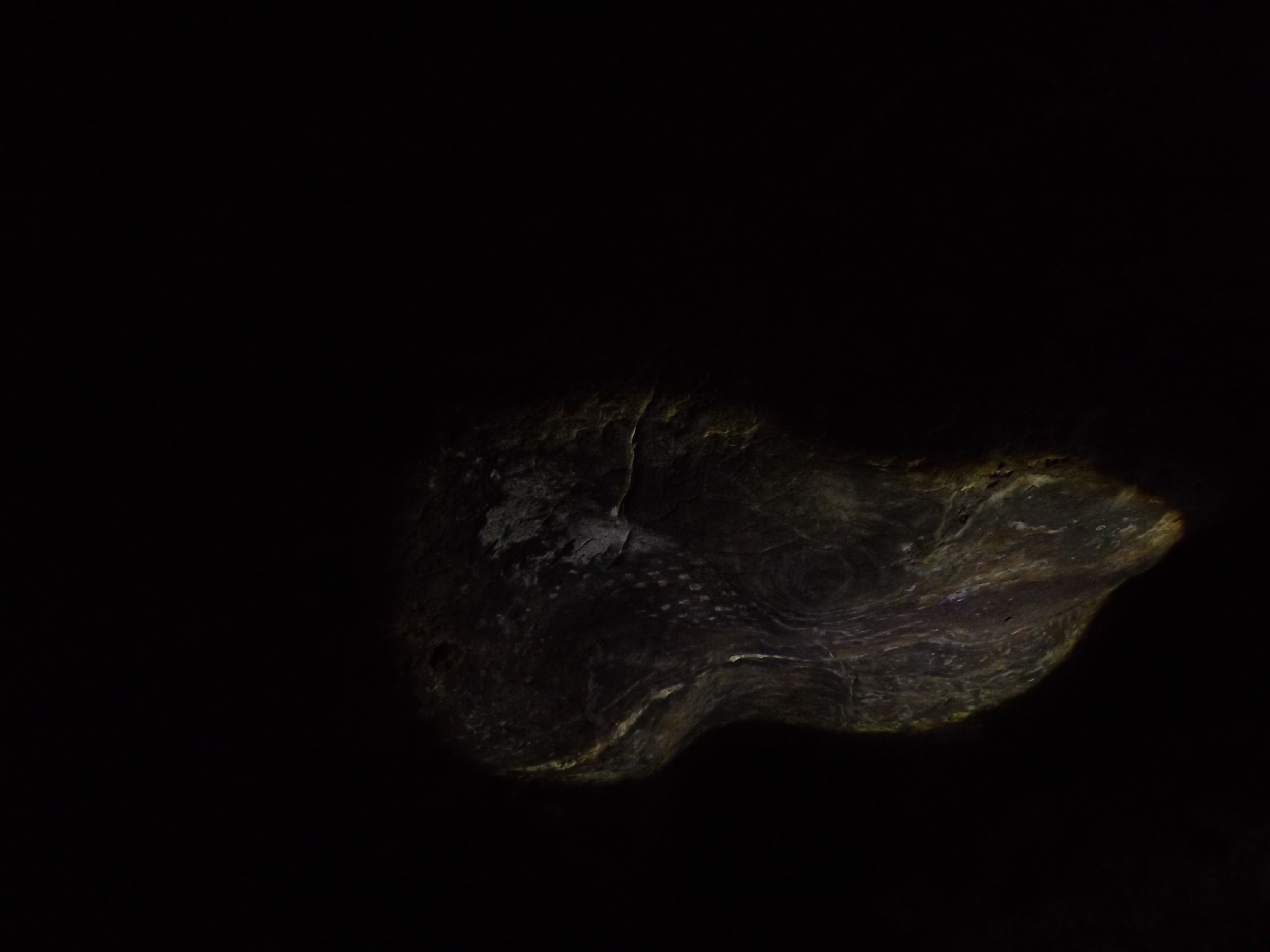 Abrigo Columbia Pedra do Corredor  Unaí-MG  Foto: Victor Manoel Ribeiro (Passarin) Iluminação:Isaura Vieira e Taís Aragão.  *Pesquisa de campo realizada  no dia 22 de junho de 2014.