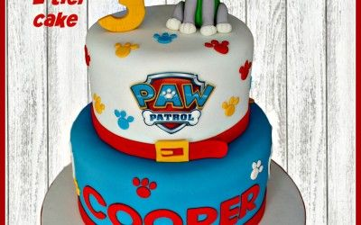 Children S Cake Gallery With Images Cake Paw Patrol Cake