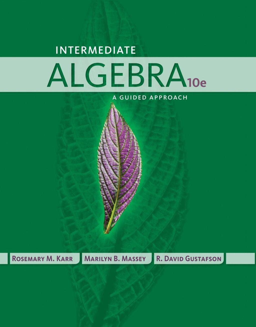 Intermediate Algebra A Guided Approach Ebook Rental