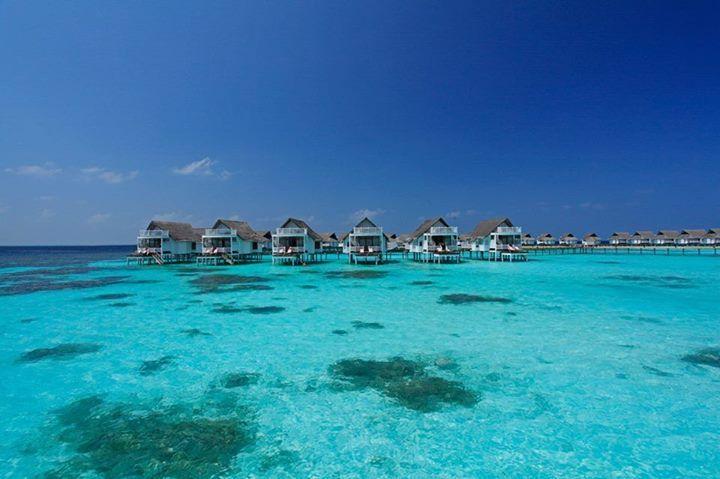 Pin By Abodeparadise On Maldives Maldives Vacation Island Resort Maldives
