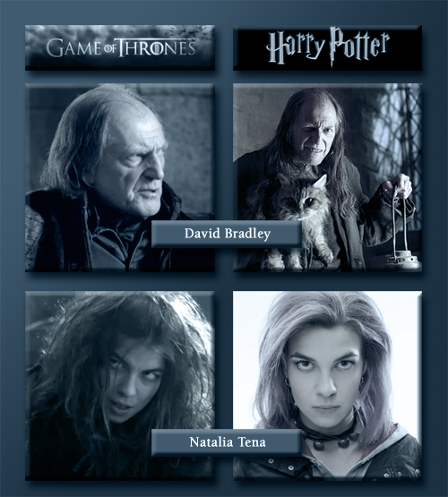 Game Of Potter So Far There Are 4 Hp Actors In Game Of Thrones Bronson Webb Tena Natalia Tena