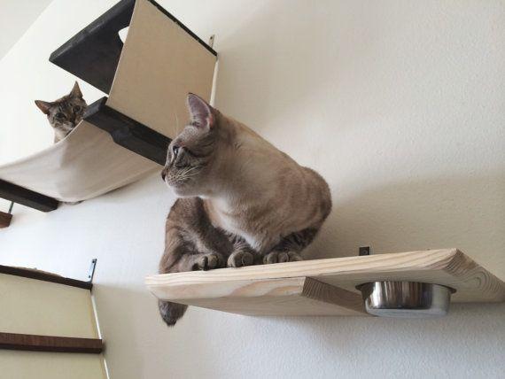 meubles chat 2 0 parcours chat pinterest chat jouet pour chat et chaton. Black Bedroom Furniture Sets. Home Design Ideas