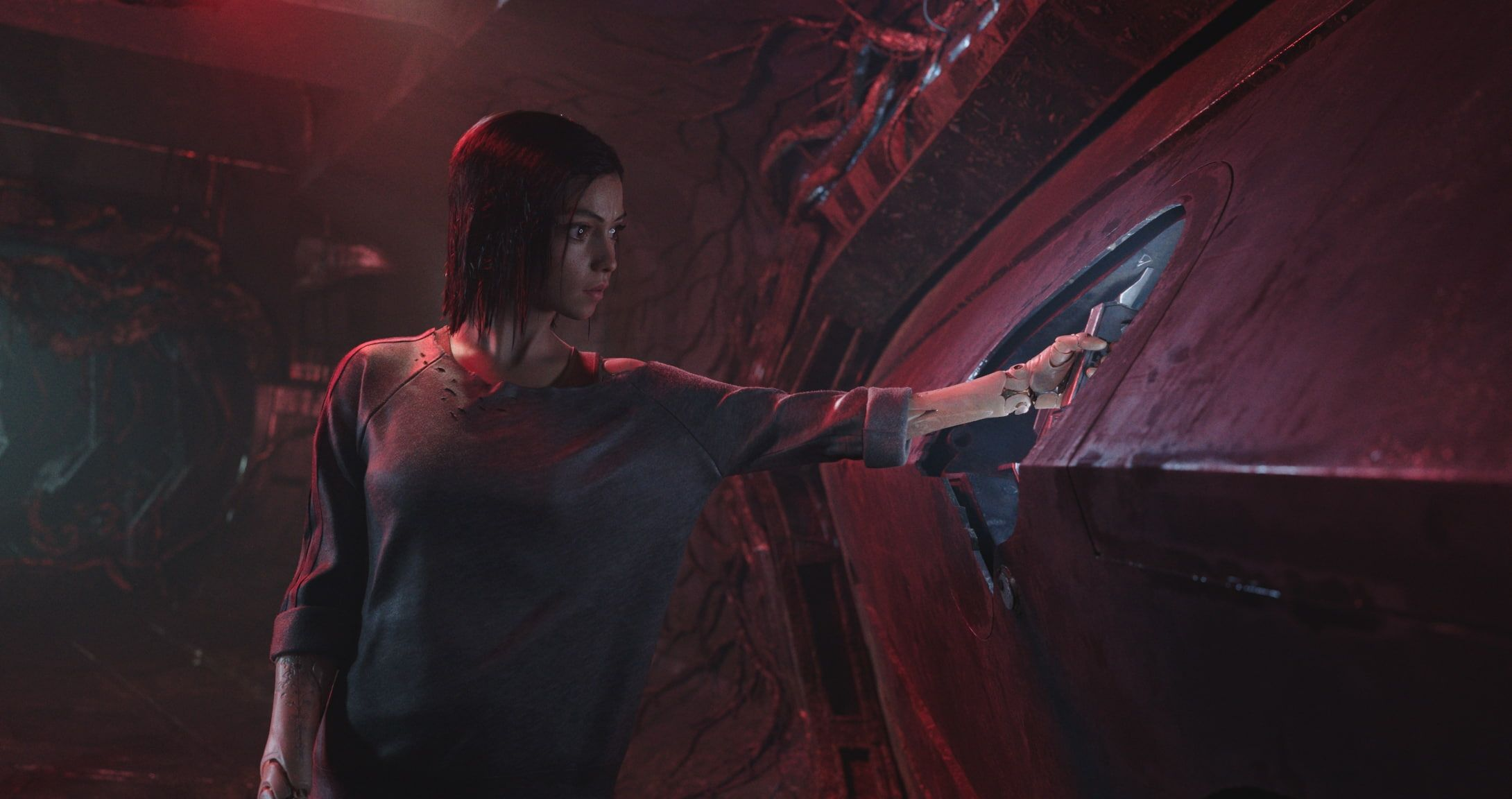 HD wallpaper: Alita: Battle Angel, Rosa Salazar, movies, women, actress, cyborg