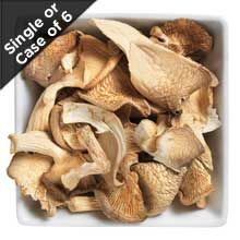 These dried mushrooms are a great cupboard staple. Soak for 20 minutes and then use like fresh mushrooms! #driedmushrooms #oystermushrooms #fairtrademushrooms #fairtradeoystermushrooms