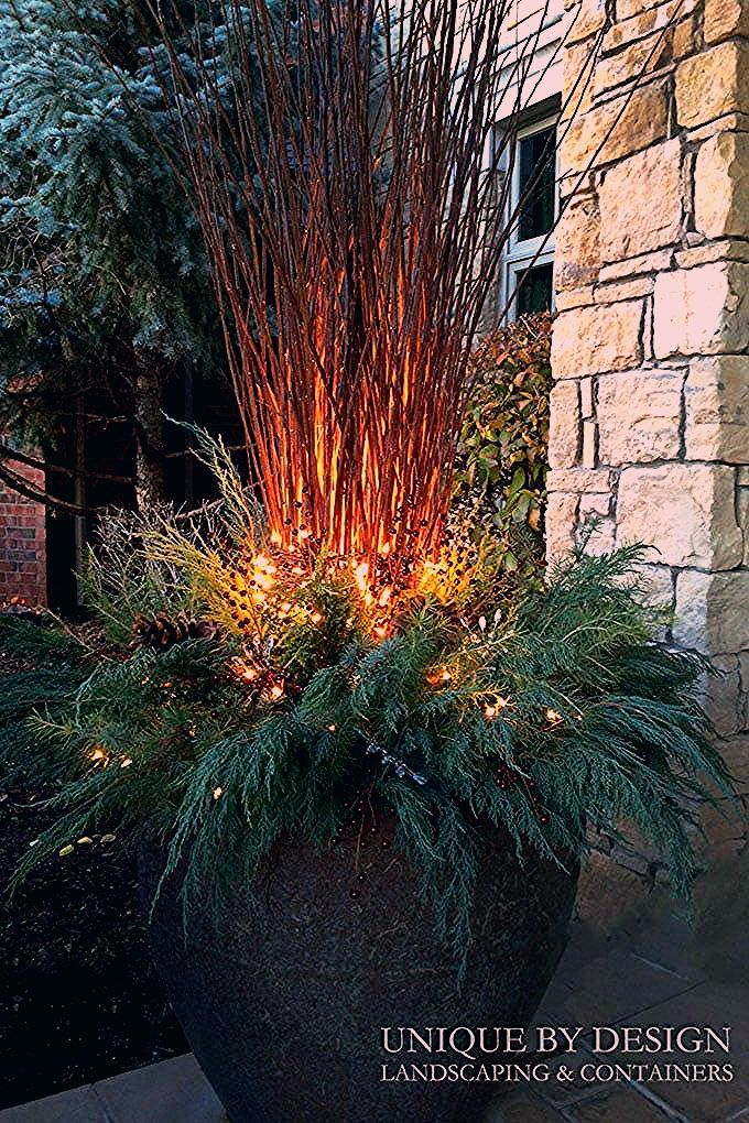 Photo of 24 Colorful Winter Planters & Christmas Outdoor Decorations