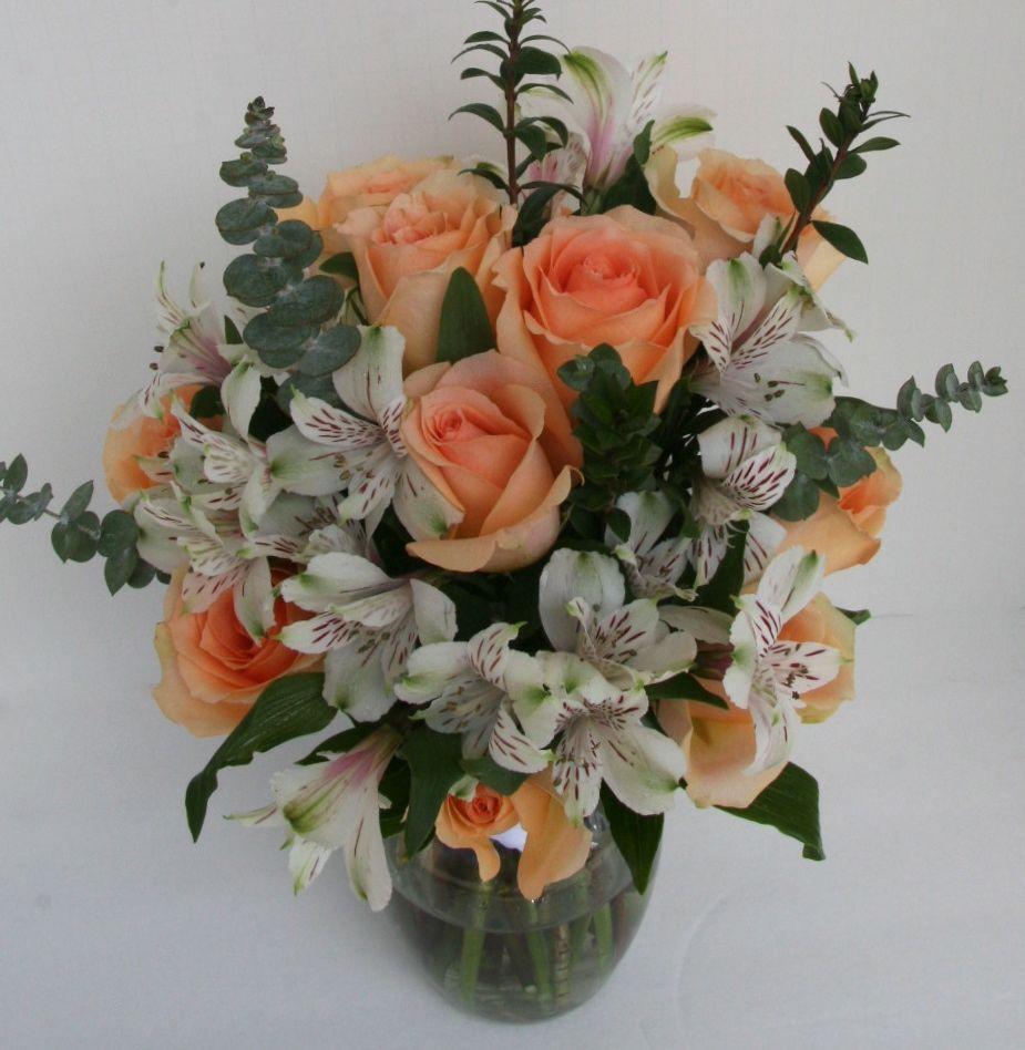 Peaches And Cream Peach Roses
