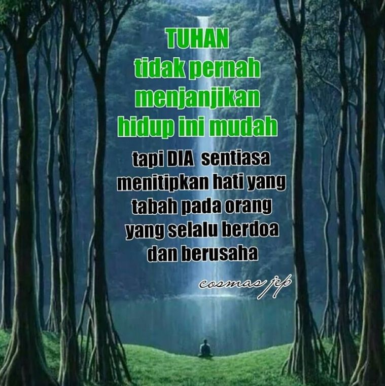 pin di quotes of the day