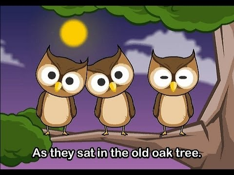 One Little Owl Family Sing Along Muffin Songs YouTube