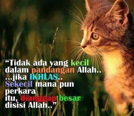 Manusia Sama Sahaja Di Sisi Allah Yang Membezakan Kita Hanyalah Amalan Nozita Kasim Islamic Quotes Allah Quotes Quotes