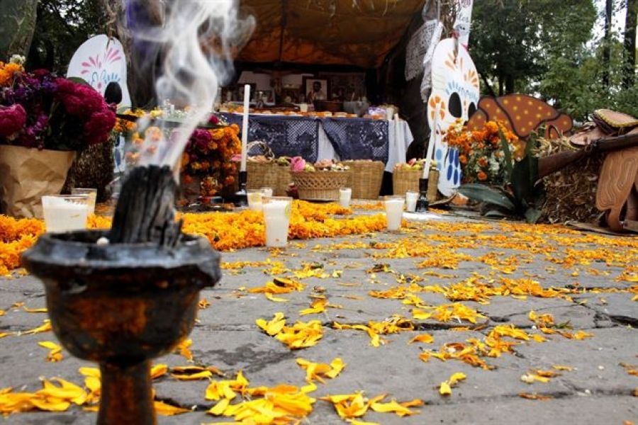 Copal for ofrendas on Day of the dead. #DayOfTheDead #Copal #Ofrendas | Bed and breakfast, Boutique bedding, Day of the dead