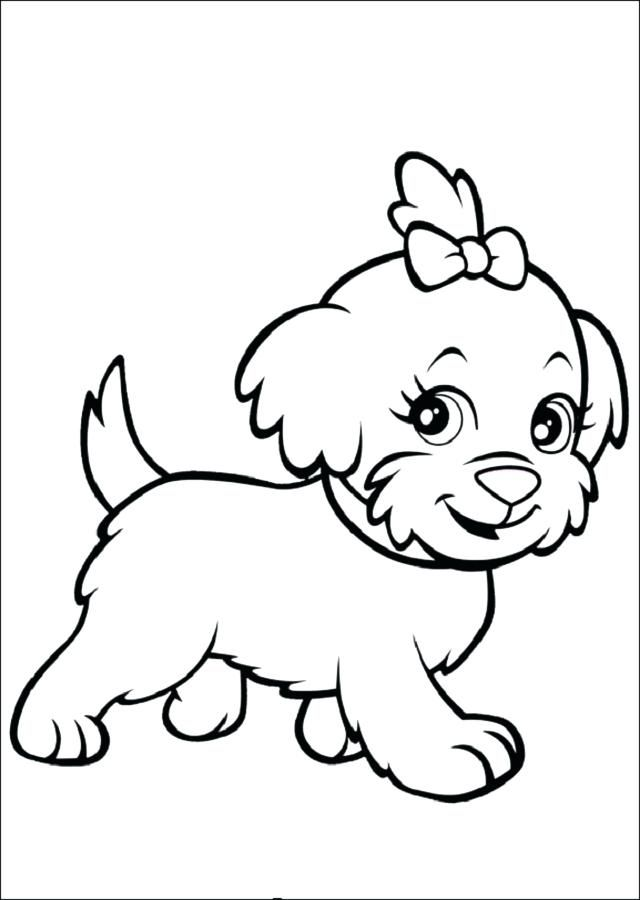Pagina Para Colorear De Perro Para Dibujos Para Pintar De Perros Chihuahua Dibujos De Perros Dibujos Faciles De Perros Perritos Para Dibujar