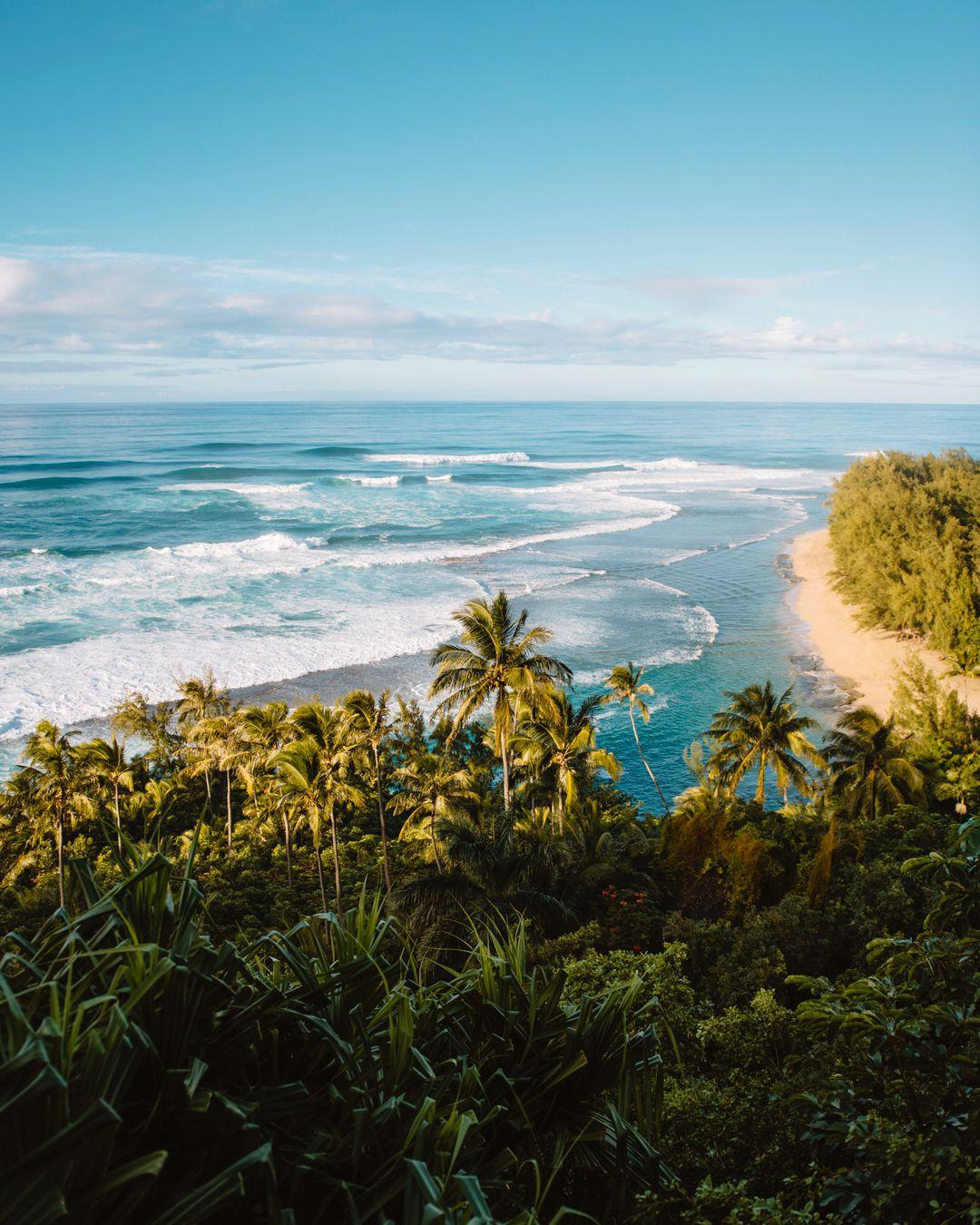Hawaii love <3