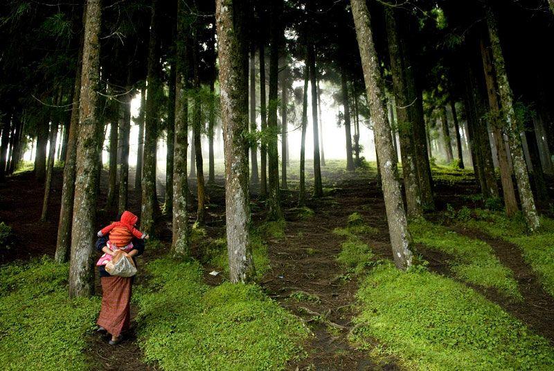 : Bhutan, Lynsey Addario