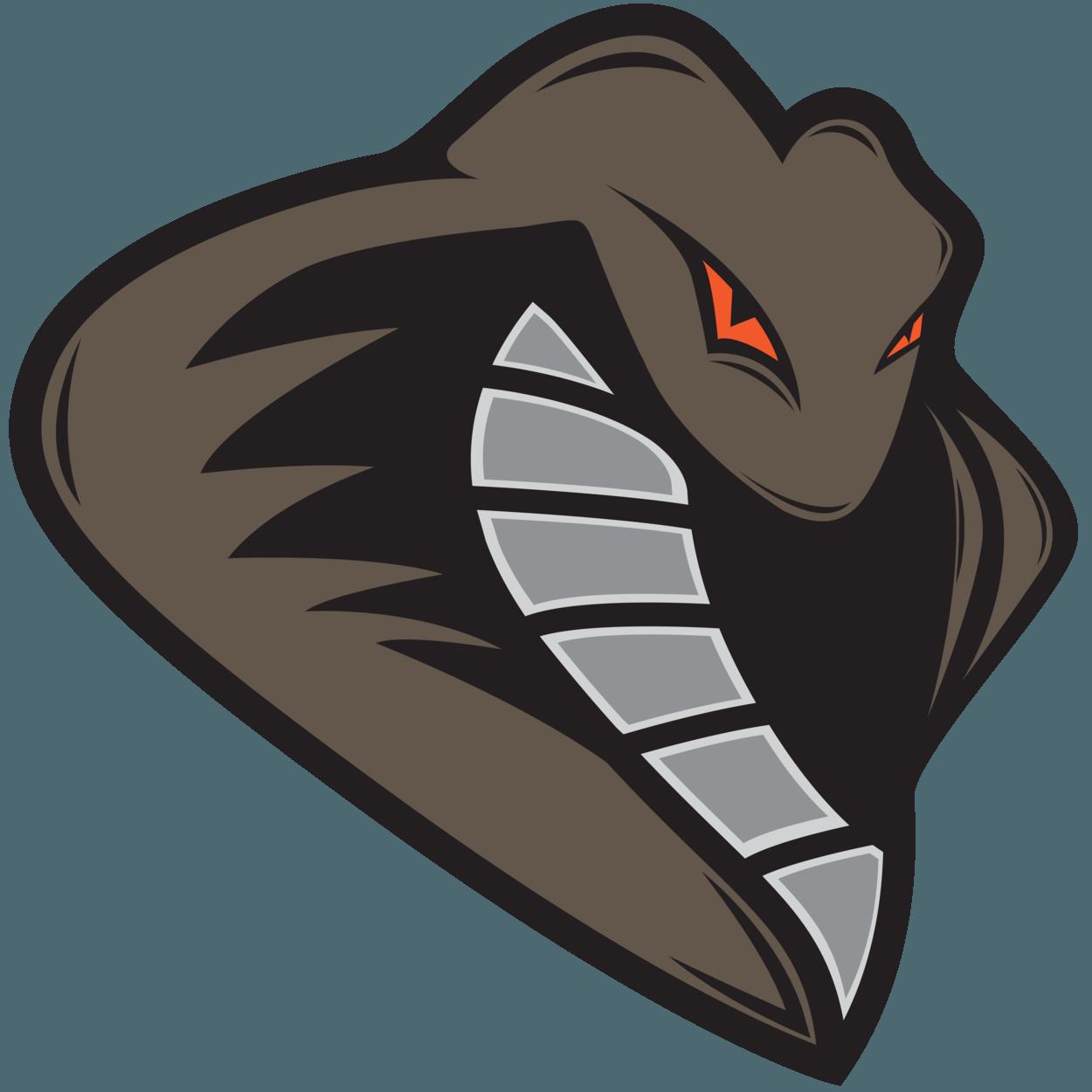 Kids bjj sports logos kickboxing snakes logo design stickers draw