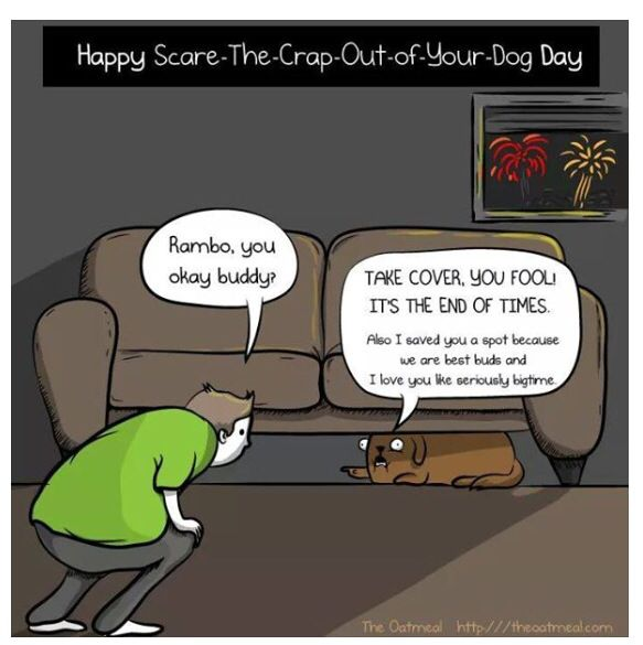 Dogs And Fireworks Don T Mix Poor Things Dogs And Fireworks End Of Times The Oatmeal Comics