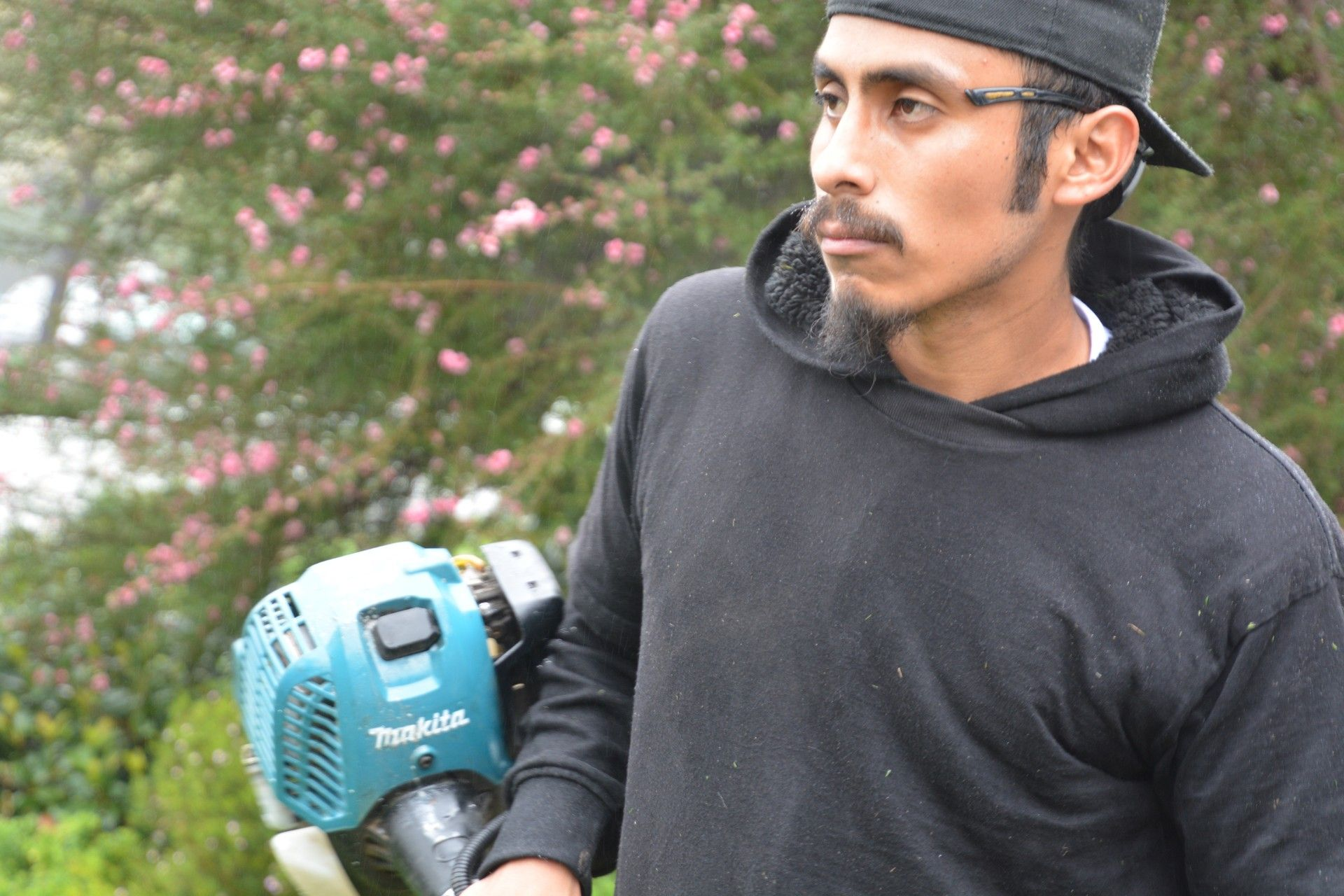 More Pollution Than Cars? GasPowered Gardening Equipment