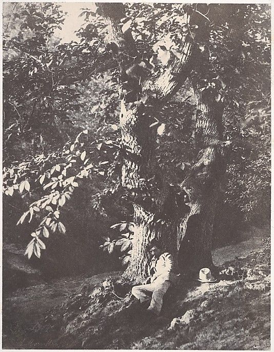 """Charles Marville, (French, 1813–1879). Man Reclining beneath a Chestnut Tree, ca. 1853. The Metropolitan Museum of Art, New York. Harris Brisbane Dick Fund, 1946 (46.122.3) 