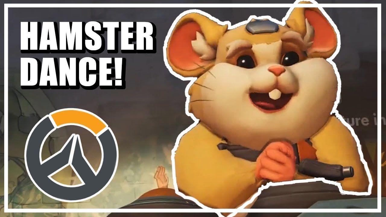 Overwatch New Hero Hammond Hamster Dance Parody Youtube