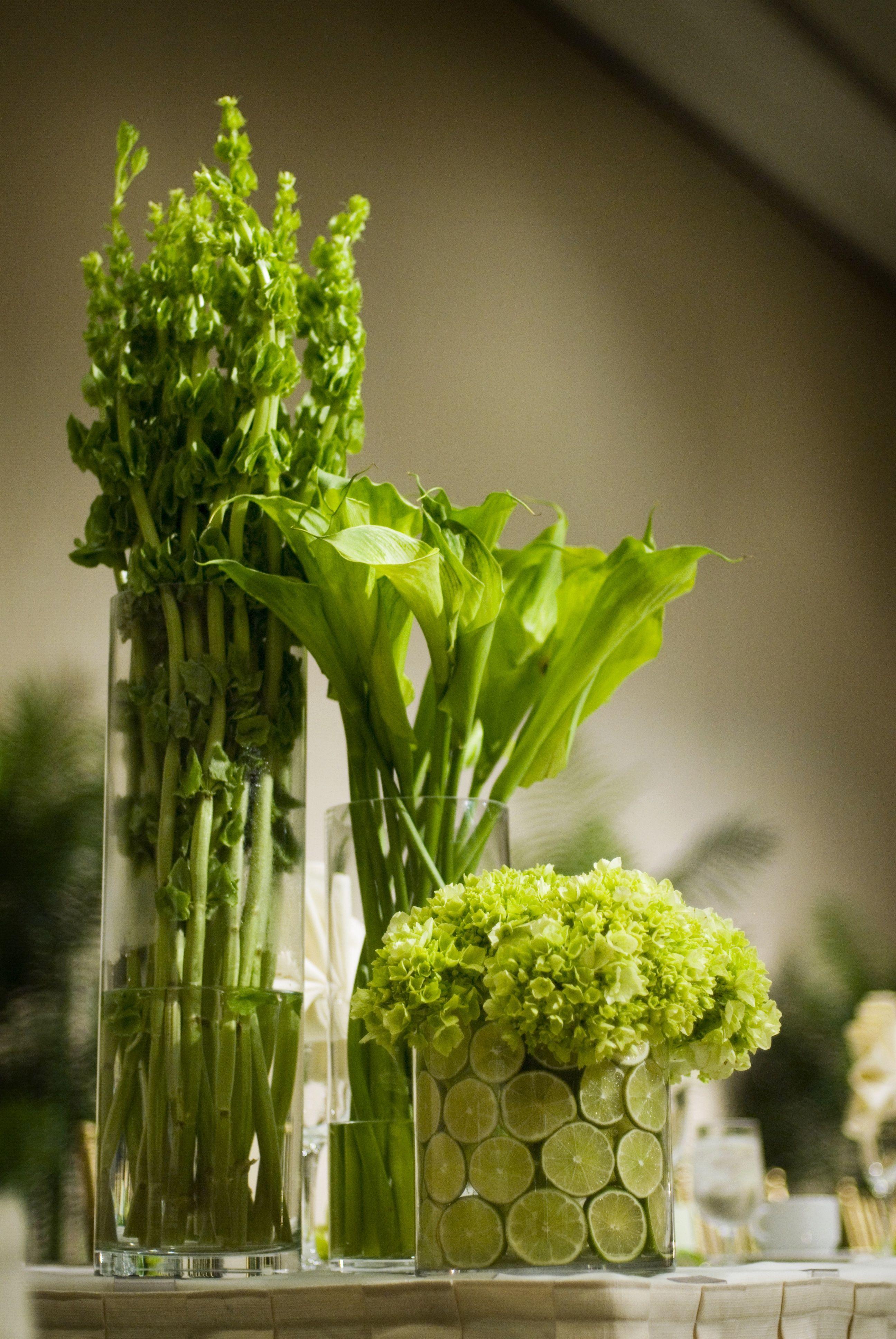 Green Bells Of Ireland Calla Lilies And Hydrangeas Modern Centerpieces Modern Centerpieces