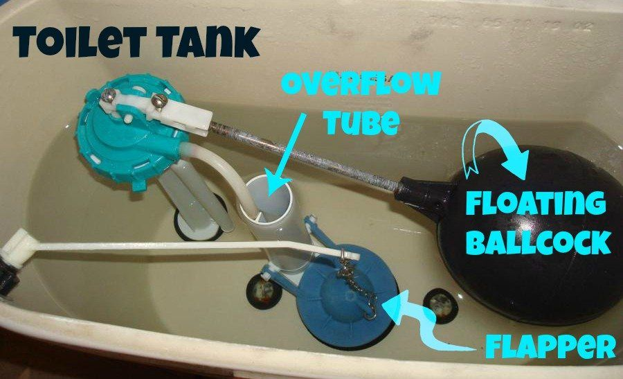 Mechanics, parts, and components of a toilet water tank | Home ...