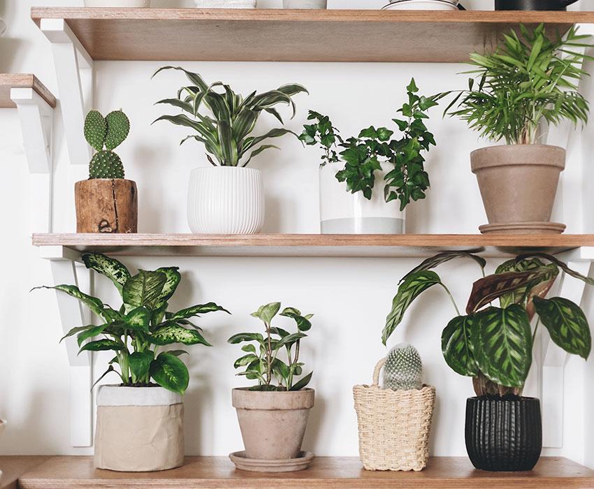 Cómo hacer un mueble para plantas Como hacer un mueble