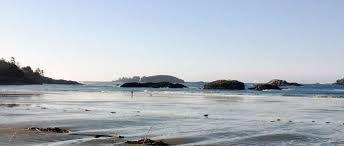 Image result for tofino beach