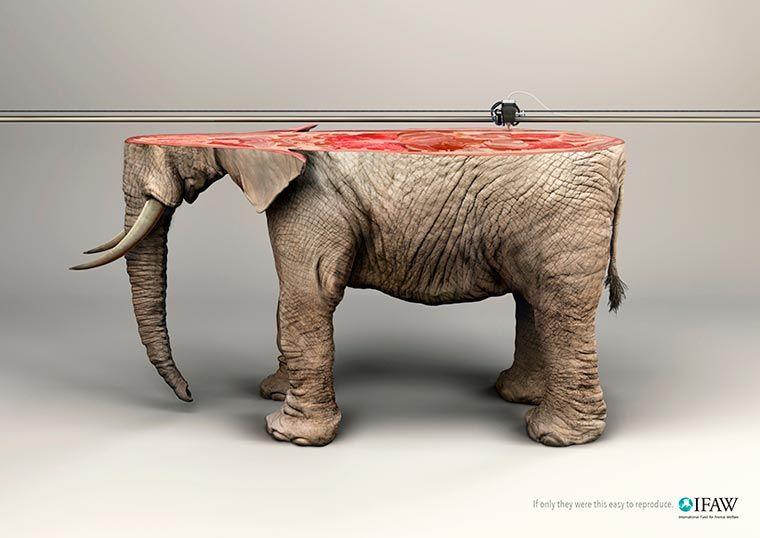 Imprimer en 3D les espèces menacées ? Une campagne choc et réaliste pour la protection de la nature et des animaux, qui nous rappelle que non, l'on ne pourra