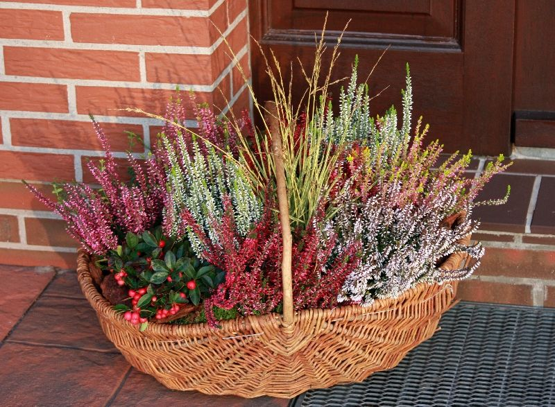 Pin By Anita Lis On Jesienne Dekoracje Fall Outdoor Decor Garden Containers Fall Decor