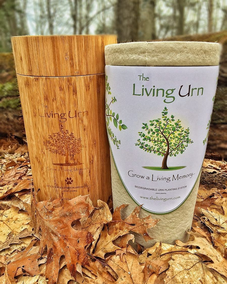 Grow a living memory tree from the cremated remains of