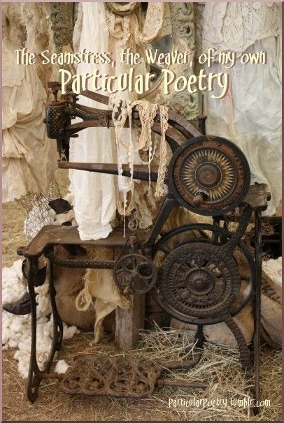 Particular Poetry