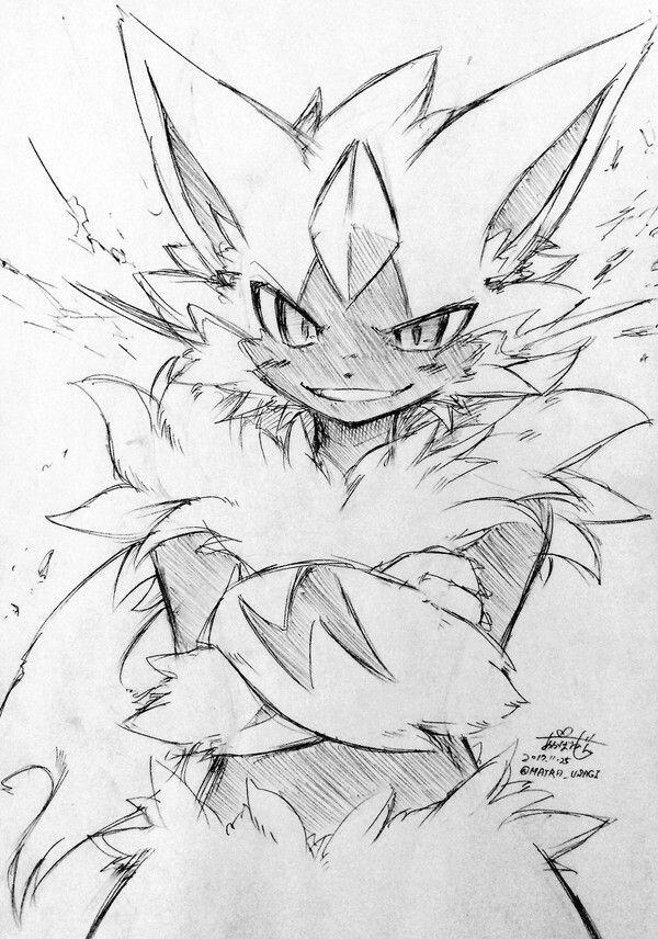 Zeraora Dessin Pokemon Dessin Modele Dessin
