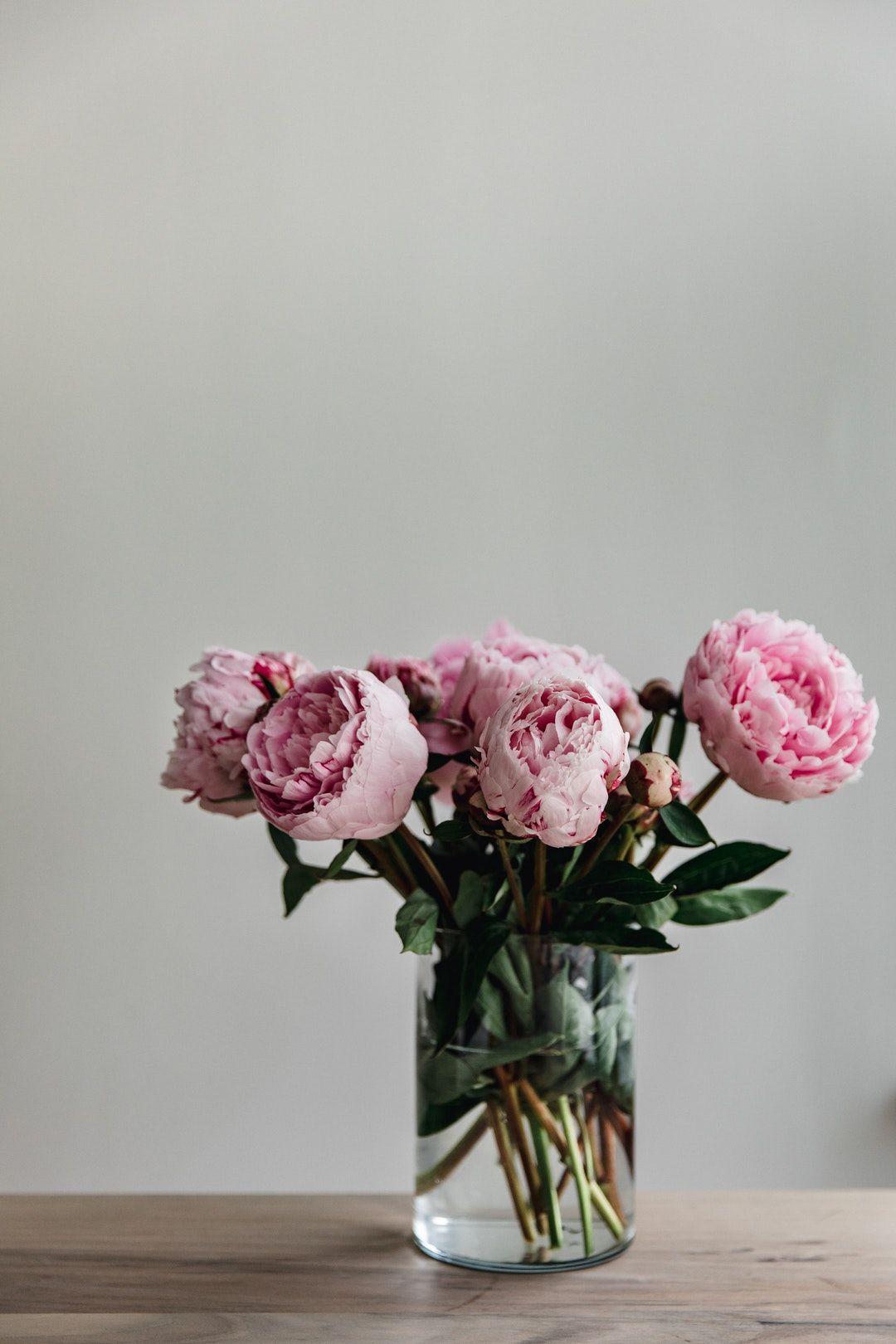 This Simple Image Of A Bunch Of Peoni Hd Photo By Patrick Langwallner Patresinger On Unsplash Flower Aesthetic Flower Vases Pink Flowers