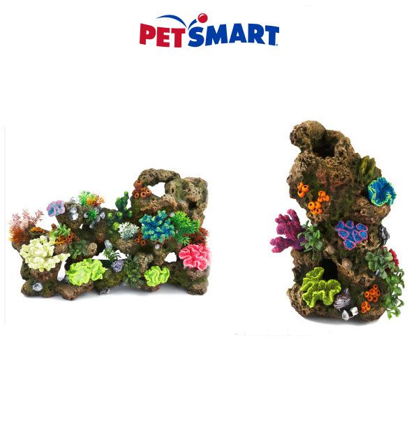 Petsmart Coupon Codes 20 Off Coupons Petsmart Grooming Coupons