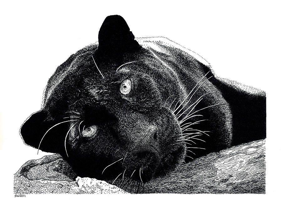 черно белые картинки лежащих животных кашля, нет