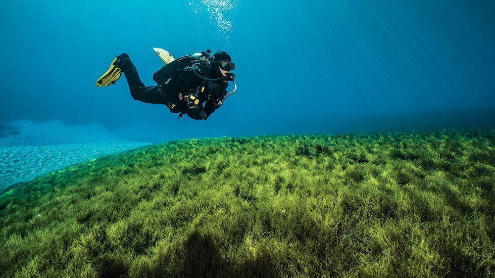 Where to Go Scuba Diving Around Portland Oregon Travel If