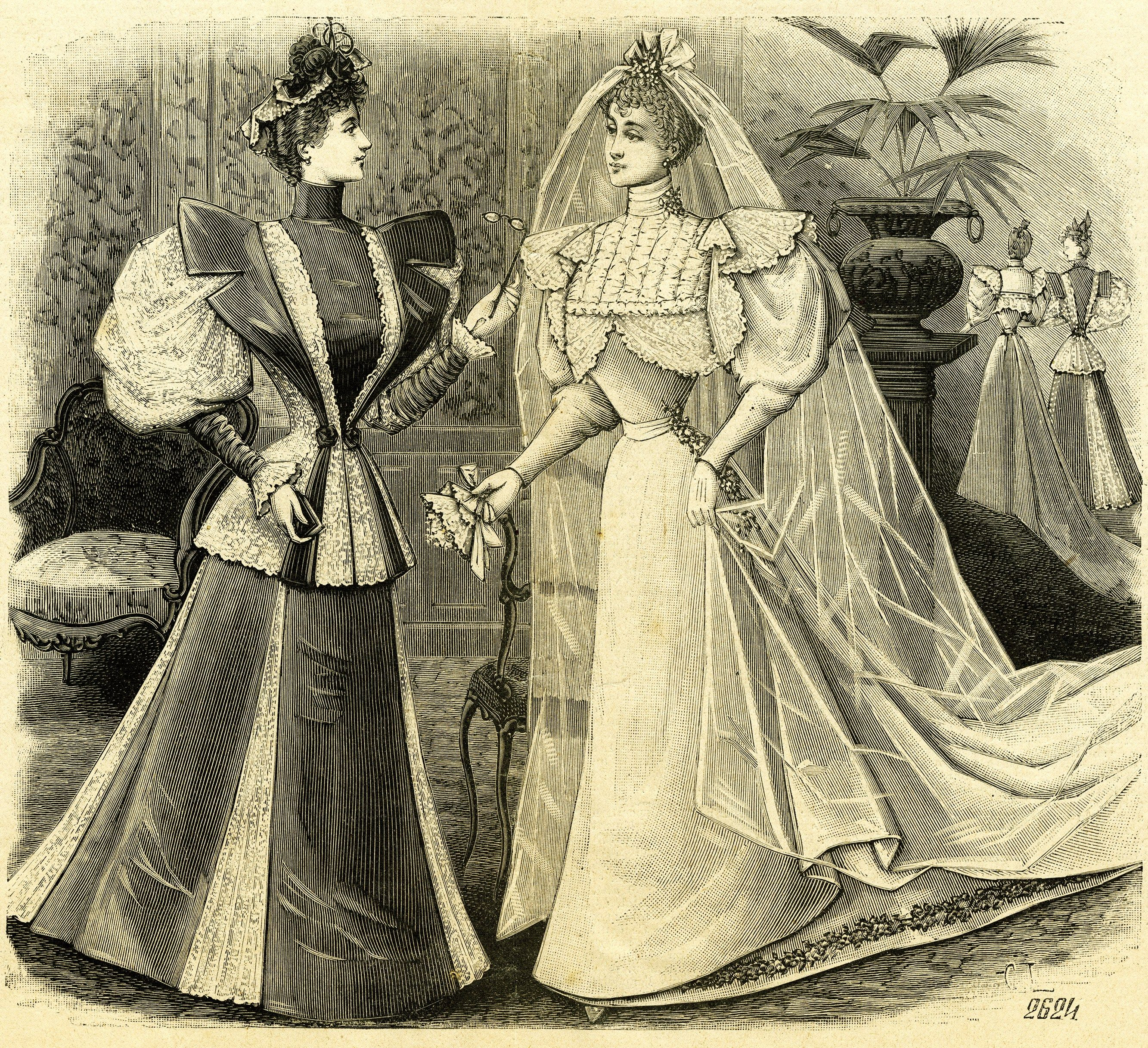 Vintage Bride Antique Engraving French Illustration Free Image Old
