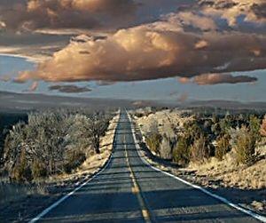 The Freedom Of The Open Road S No Longer Free Open Road Road Best Family Cars