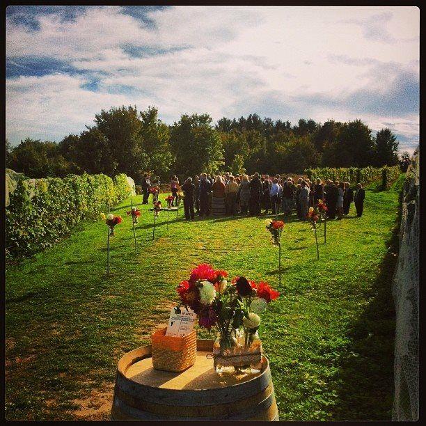 Outdoor Wedding Ceremony Calgary: Black Star Farms Vineyard Wedding, Suttons Bay, MI.