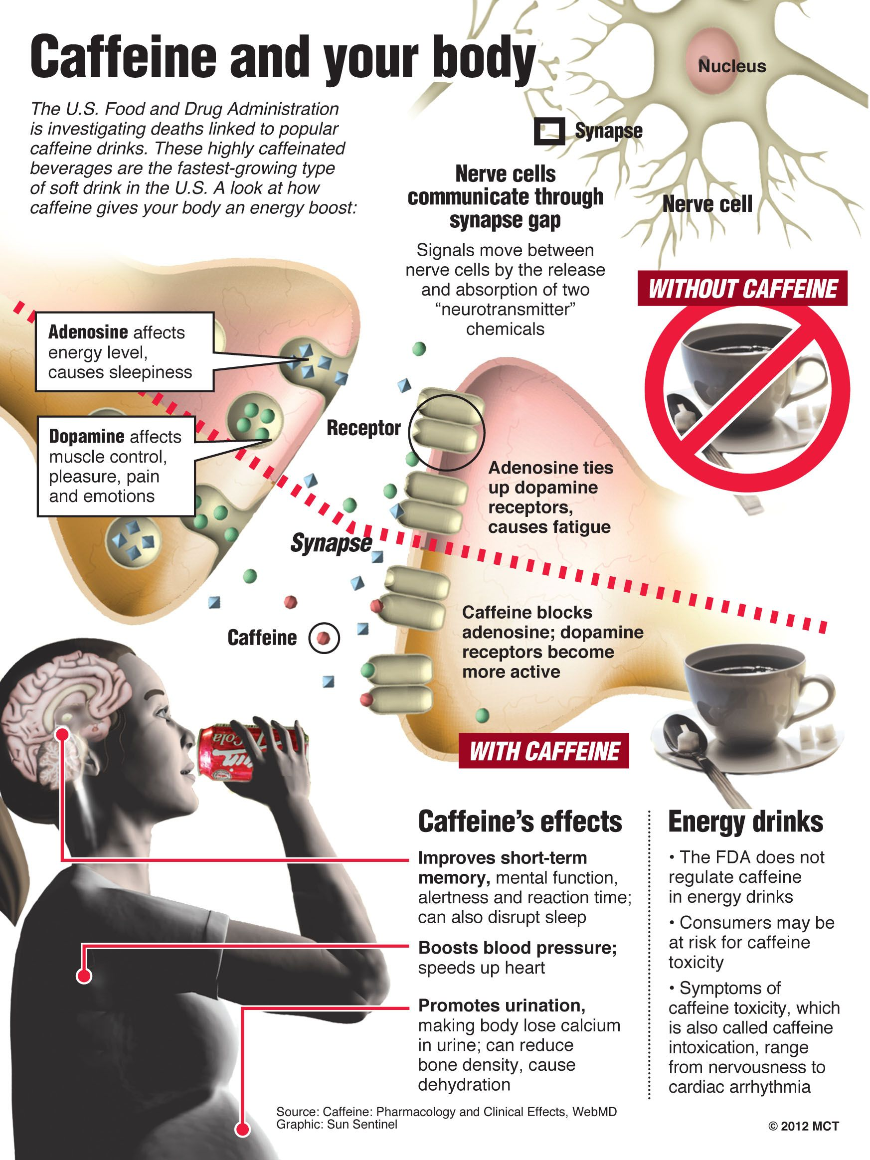 Do The Pros Of Drinking Coffee Outweigh The Cons Even If They Don T That S Not Stopping Us From Drinki Coffee Health Coffee Infographic Coffee Pros And Cons