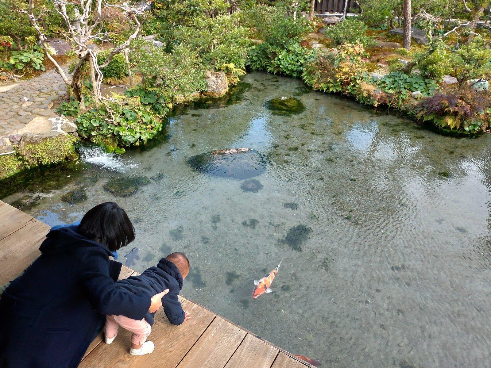 湧水庭園 四明荘 島原市 2021 庭園 訪問 観光