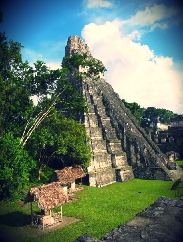 Tikal Guatemala (With images) Guatemala travel Tikal Beautiful places to travel