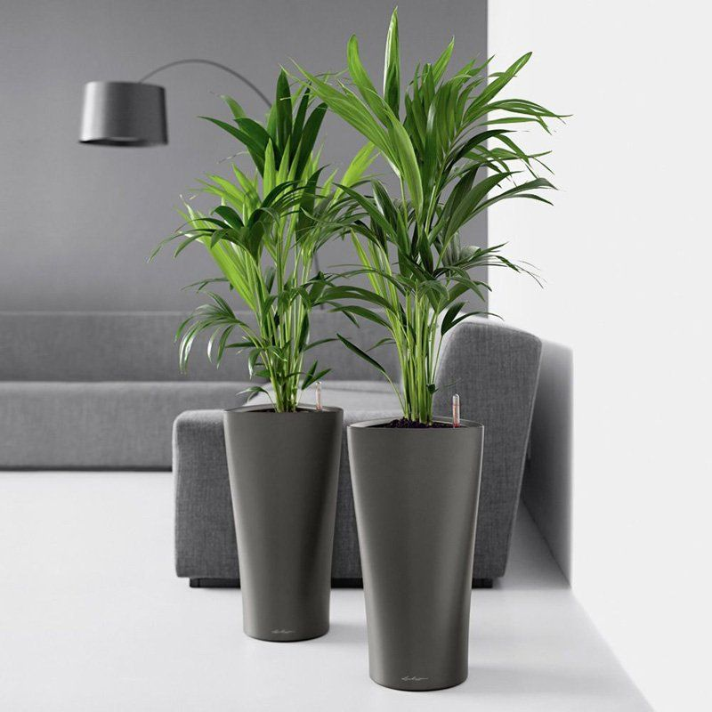 Have to have it. Round Lechuza Delta Self-Watering Indoor Planter ...