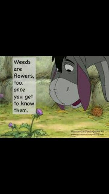 Weeds are Flowers too.