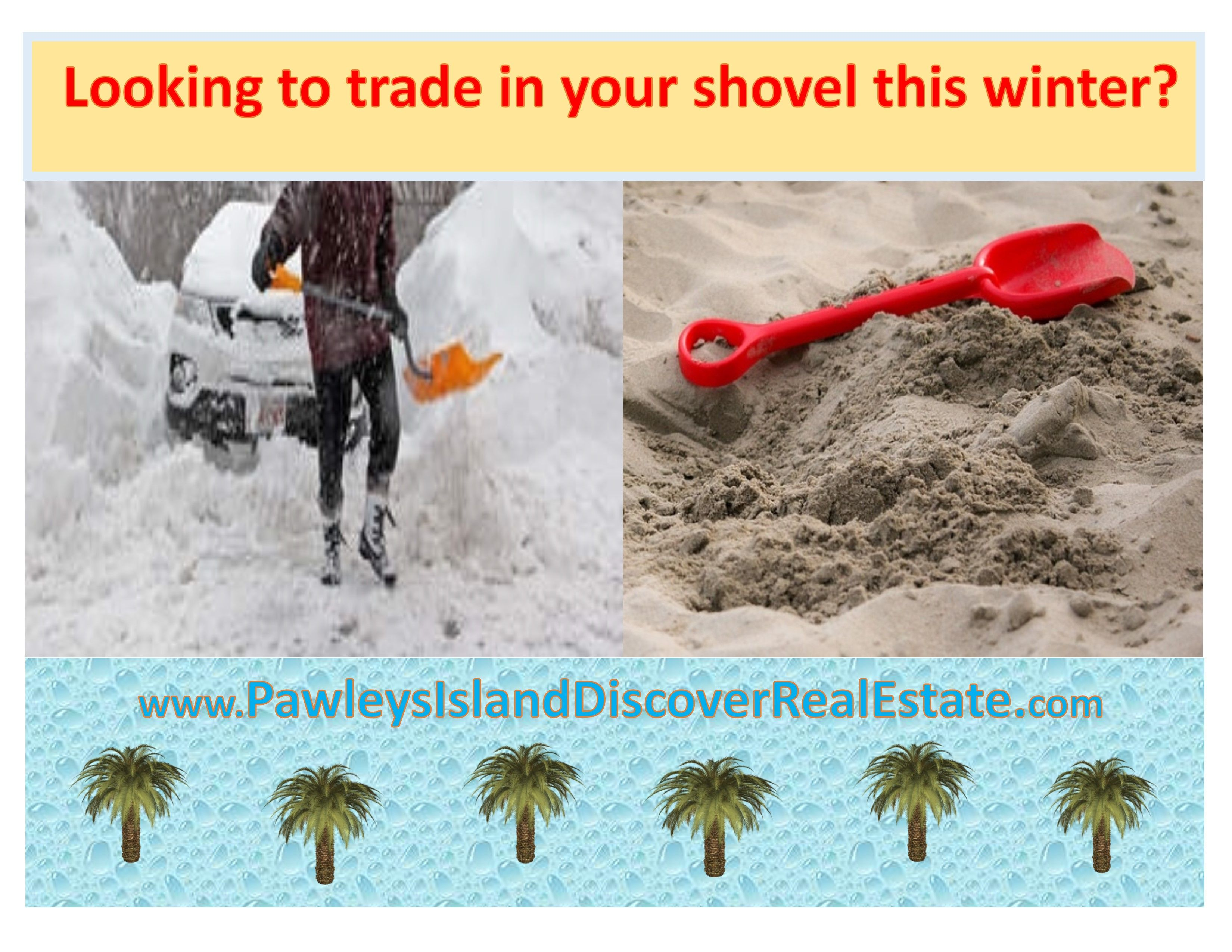 www.PawleysIslandDiscoverRealEstate.com