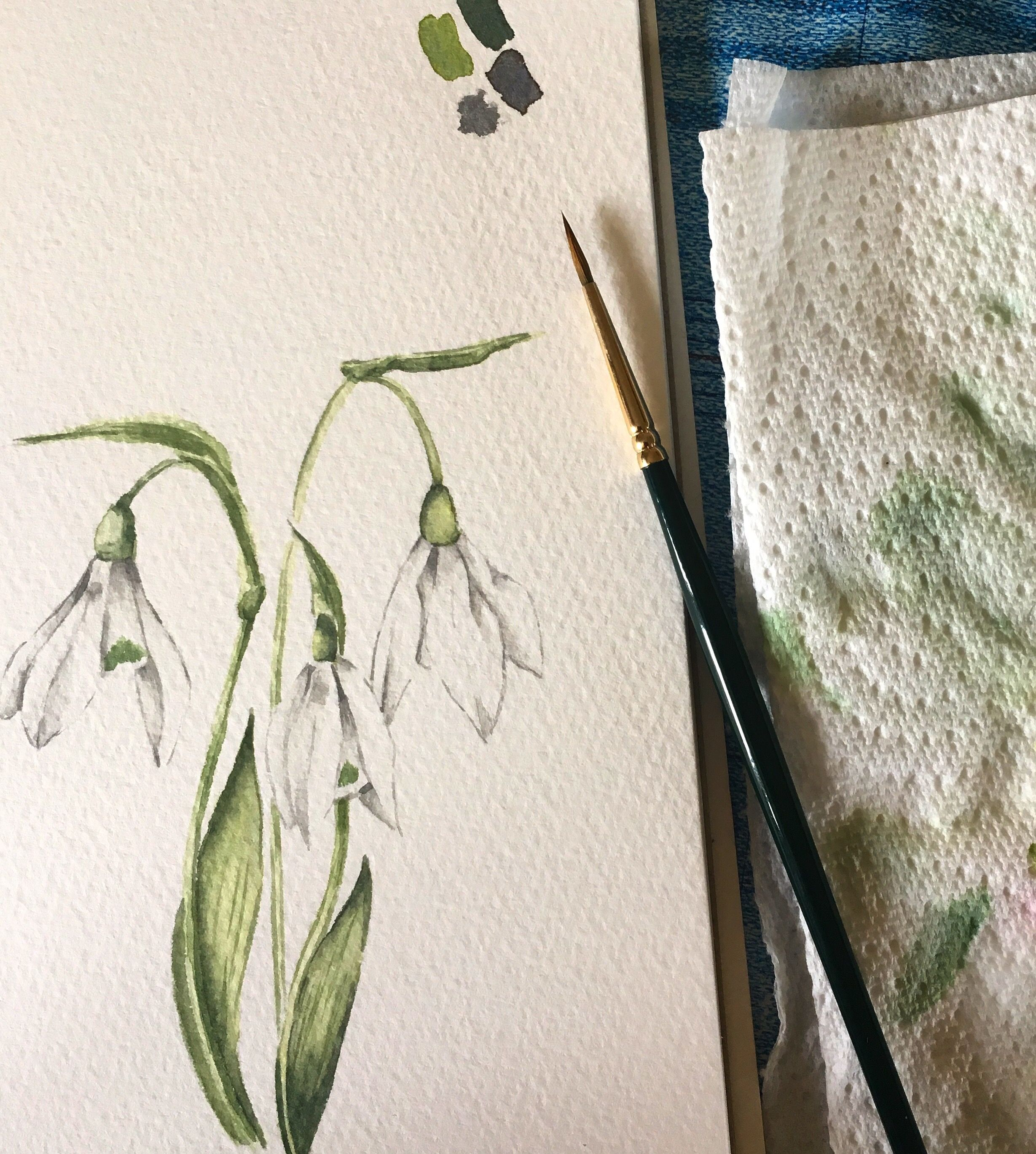 Snowdrops Hand Painting Art Watercolor Art Paintings Flower Illustration