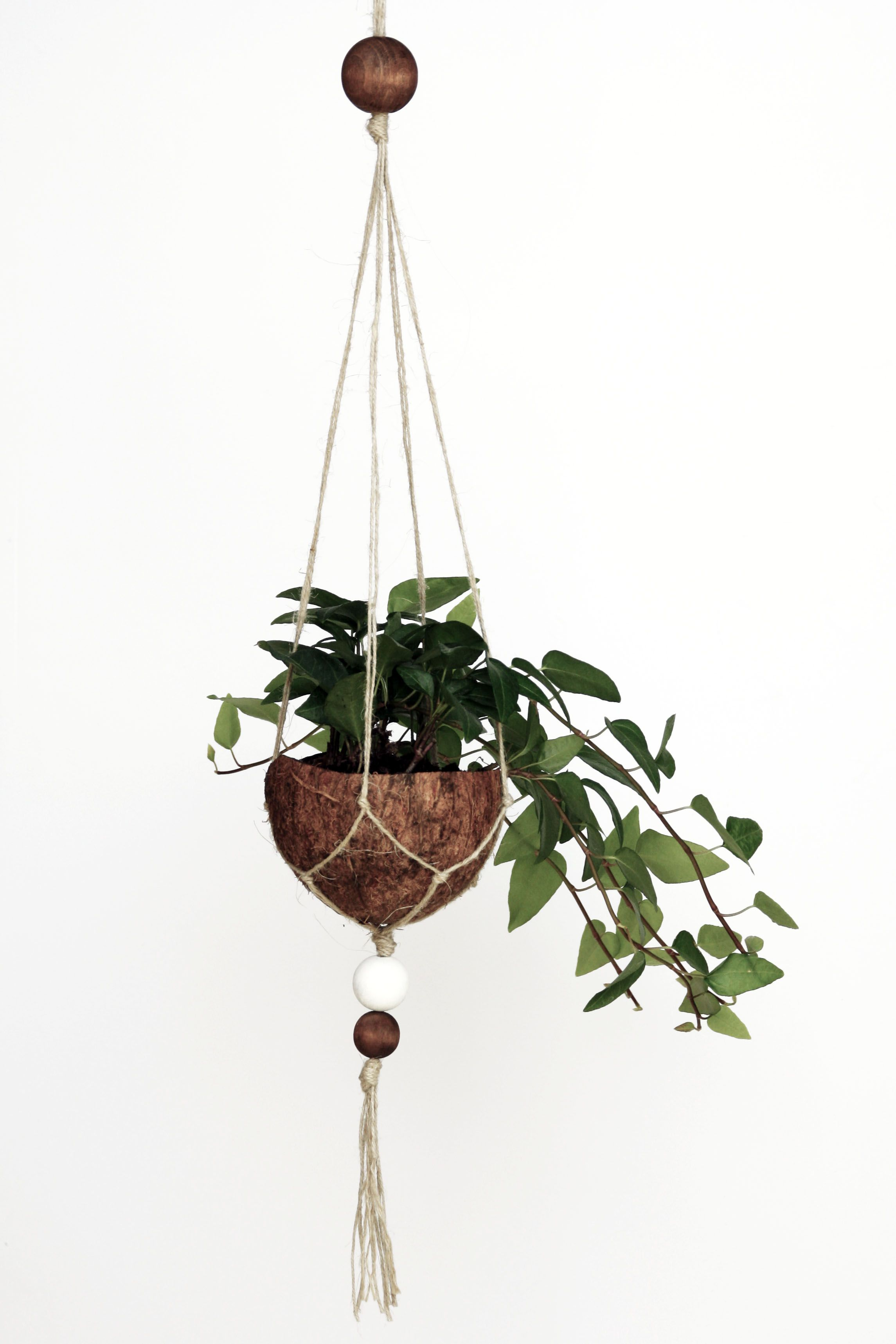DIY Upcycling Kokosnuss Blumenampel | Coconut Makramee Hanging Basket | Pflanzen | plants | do. it yourself | deko | basteln | urban Jungle bloggers | Zimmerpflanzen | Anleitung Idee Tutorial kreativ | handmade | coconut | plant pot | Blumentopf | grüner Wohnen