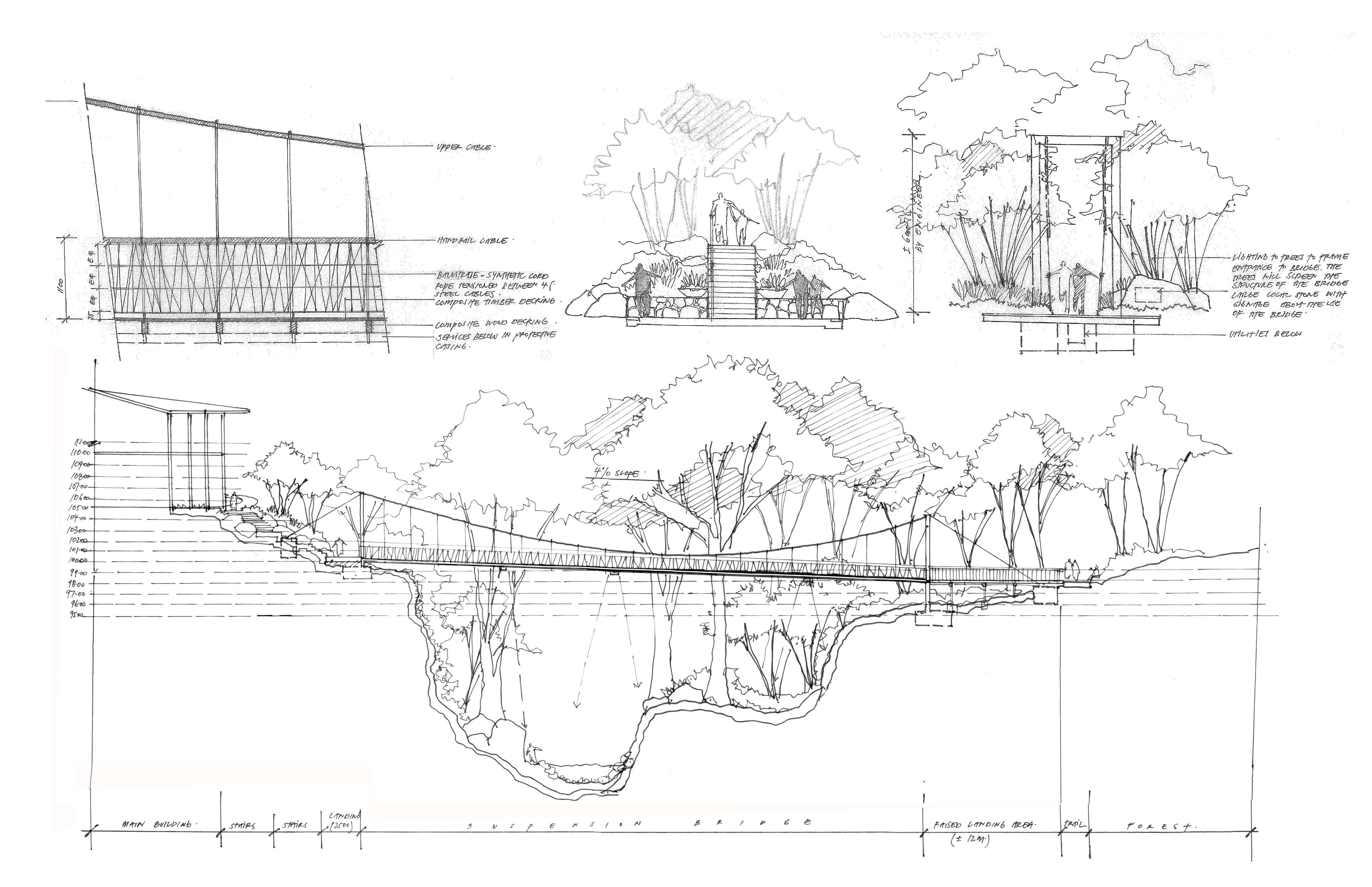Hand Drawn Details Landscape Architecture Section Vida