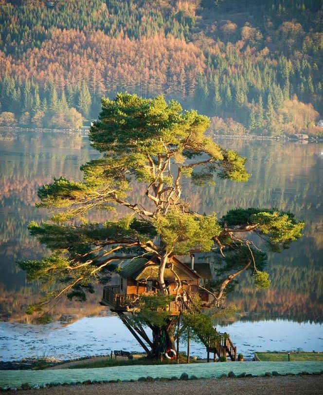 Amazing Places To See Scotland: Pin By Aukse On *tree Houses*