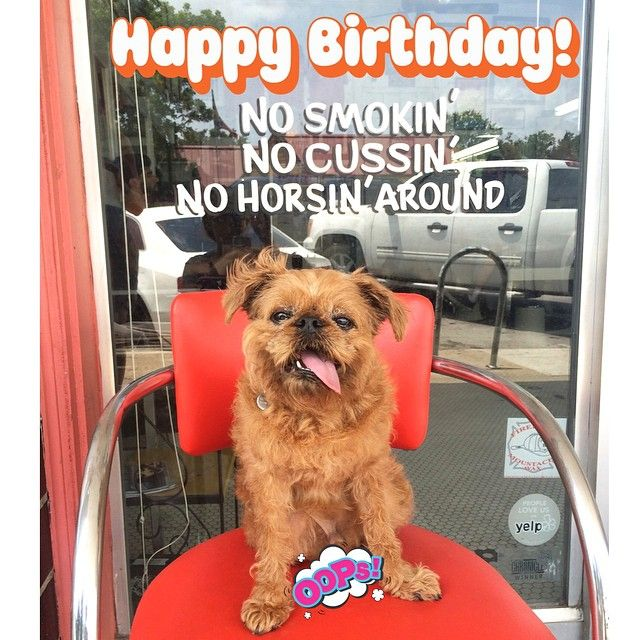 Woofs And Wags Of Happy Birthday Wishes To Our School Manager Teacher Extraordinaire And Ballroom Dancing Queen Dog Training Classes Dog Training Puppy Play