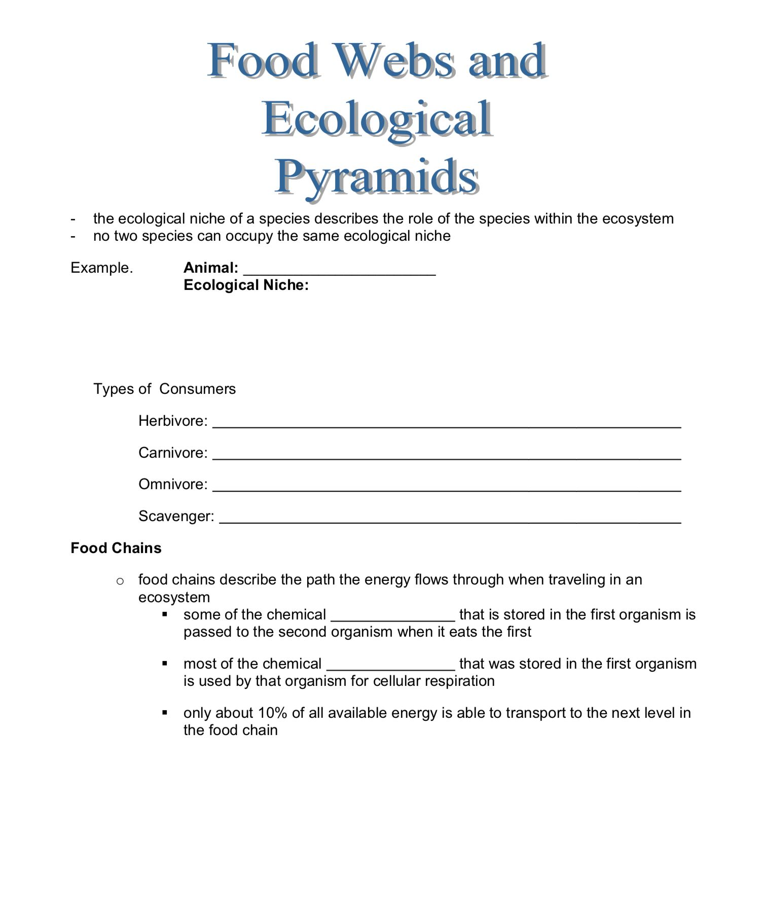 Food Webs And Ecological Pyramids